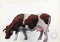 Die Kuh, die Schöne; Acryl auf Papier 70x50cm, 2004