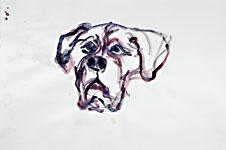 Wuff, Acryl auf Papier 70x50cm, 2007